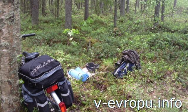 Из Рованиеми в Швецию на велосипеде. Отдых в лесу