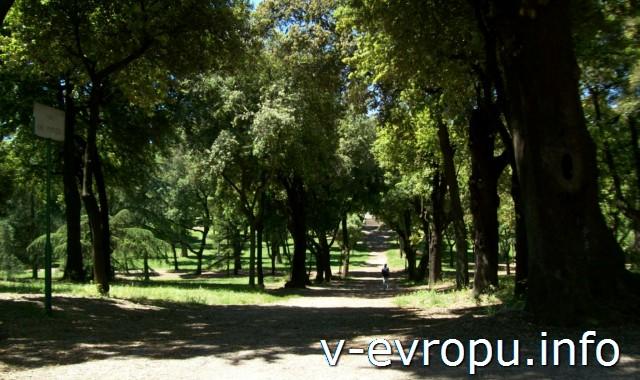 Улицы парка Боргезе в Риме