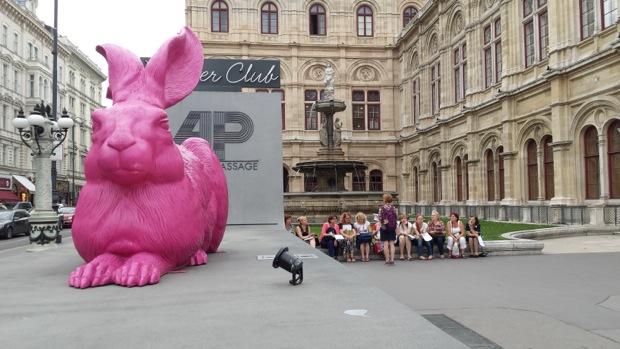 Заяц Дюрера наблюдает за нашей Живой Встречей