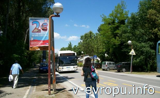 До аутлет-деревни из центра город ходит специальный автобус