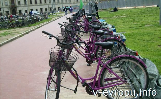 Пункт проката велосипедов во Флоренции