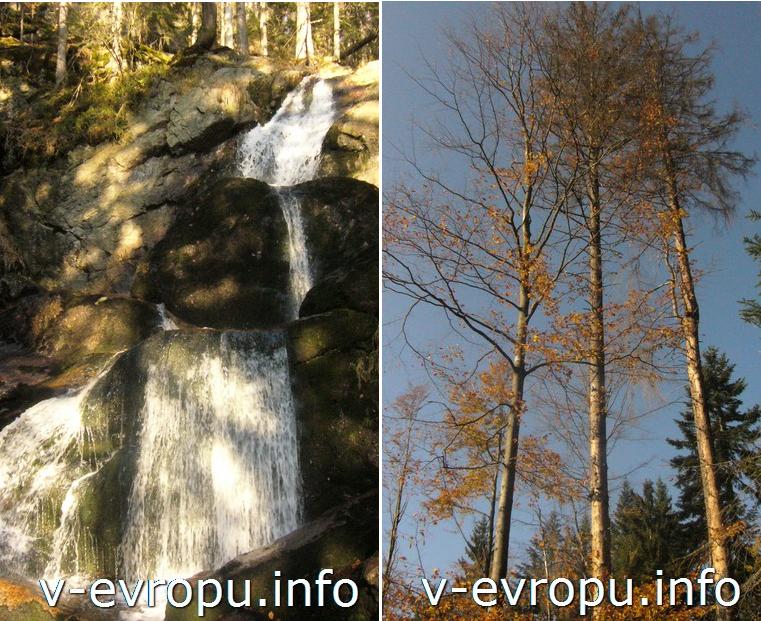 Осень в Баварии (Боденмайс)