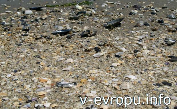 Песок равеннского пляжа
