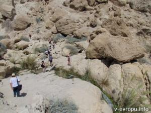 Туристы гуляют по заповеднику Эн Геди