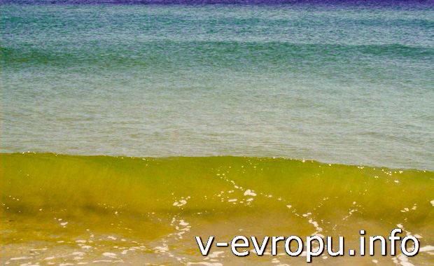 Море итальянской Равенны в мае