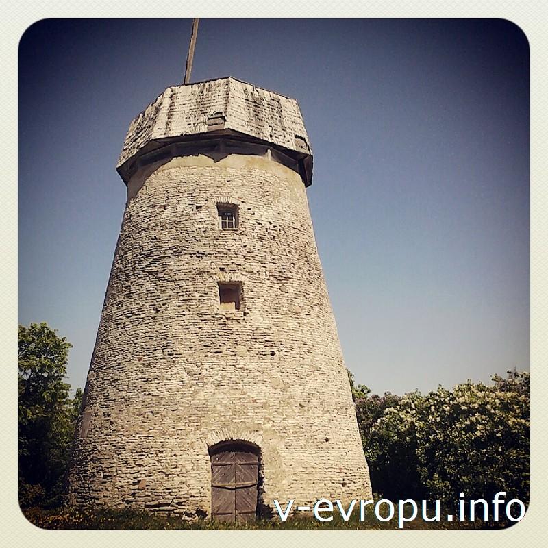 Около ветряной мельницы в Раквере отличное позиция для панорамных снимков города