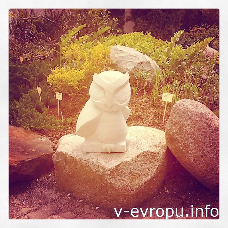 Белая сова в Ботаническом саду Тарту