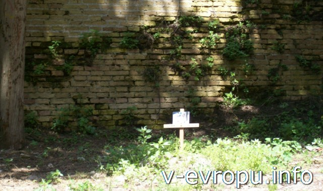 Цитадель Анконы: кладбище животных