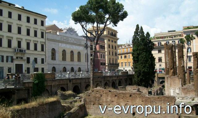 Кошки в Риме живут на Ареа Сакра