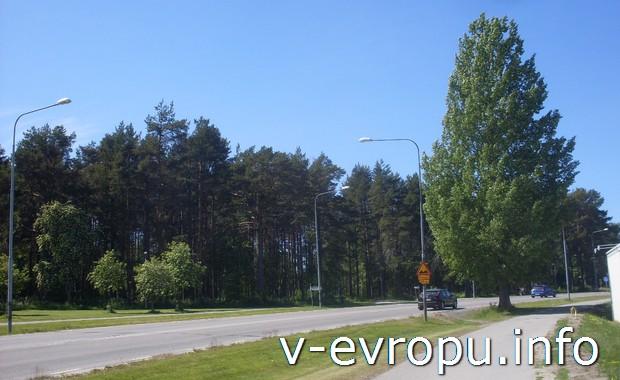 Шоссе и велодорожка в Швеции близ Умео