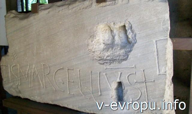 Экспонат музея Колизея