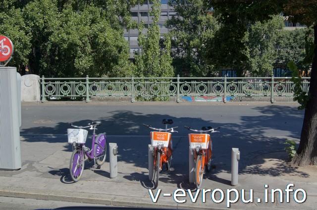 По Вене на велосипеде: дешево и удобно!