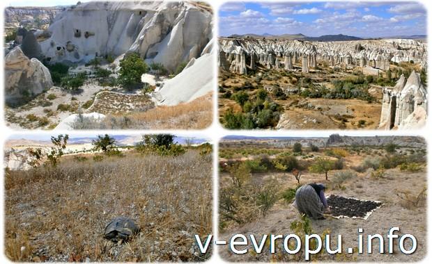 Экскурсии в Каппадокии