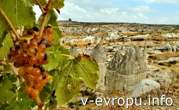 Виноград в Гёреме