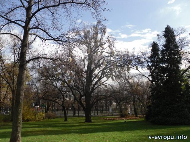 Городской парк в Вене