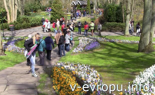 Сколько длится экскурсия по парку тюльпанов в Кёйкенхофе?