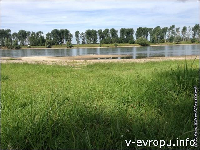 Заливные поля вдоль Рейна