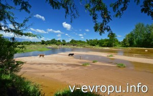 Кордоба. Река Панахольма